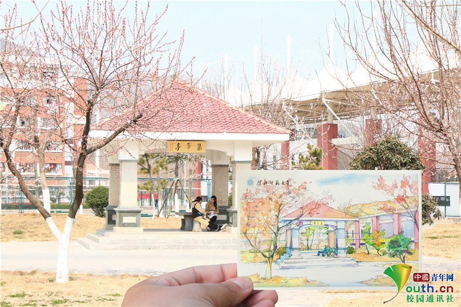 """安徽大四学子手绘""""校园明信片"""""""