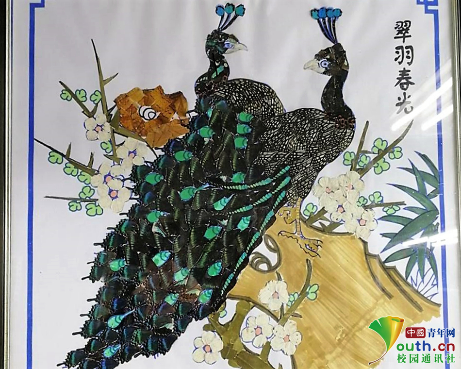 突出植物保护专业意义,寓意变有害为艺术,希冀生态平衡.