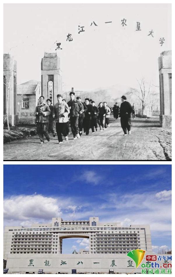 【中国青年网】大学生晒新旧校门照片对比图 感受学校图片